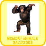 Memory animals salvatges